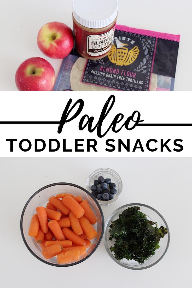 Paleo Toddler Snacks