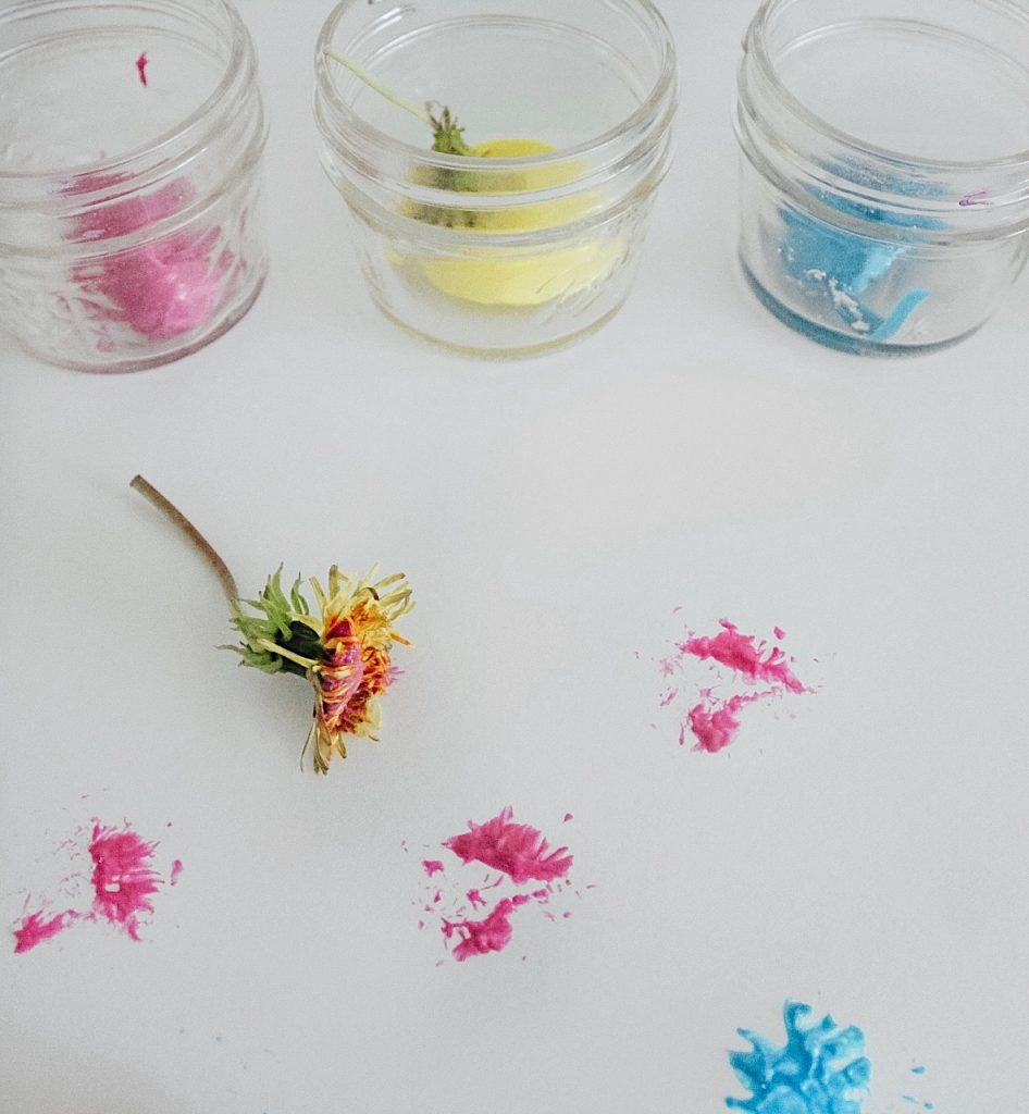 Painting with Dandelions