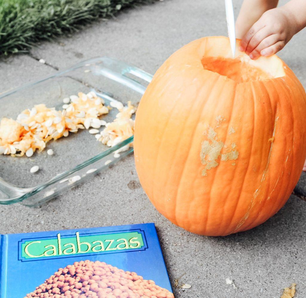 Fall Themed Sensory Bin Ideas
